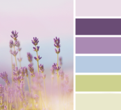 Vintage Lavander - Shabby Chic Colour Palette