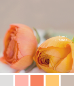 Vintage Orange - Shabby Chic Colour Palette