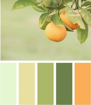 Citrus - Green Power Colour Palette