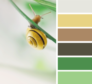 Nature - Green Power Colour Palette