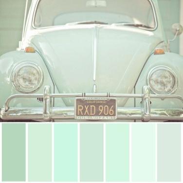 Mint Tint - Green Power Colour Palette