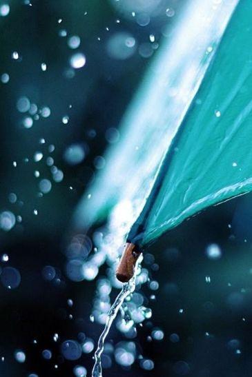 Rain 18