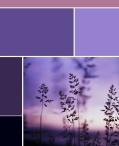 purplepalette5