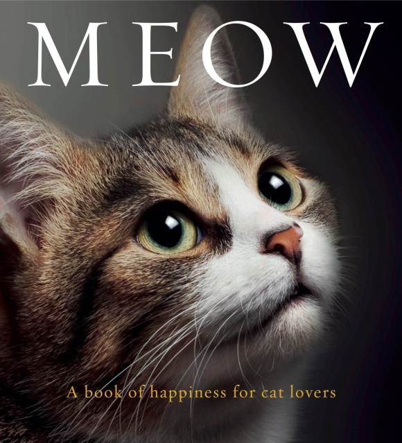 Meow-a-book-of-happiness-for-cat-lover