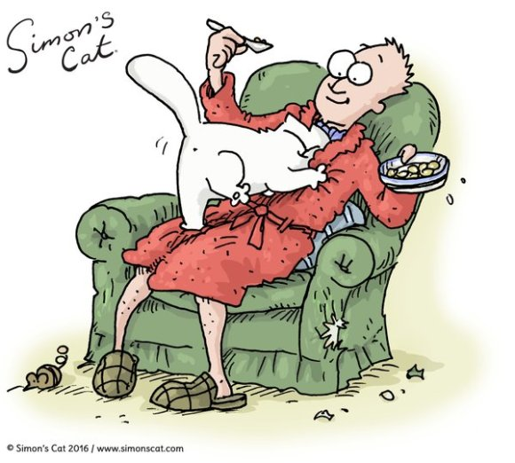 Simon's Cat for PetNationalDay